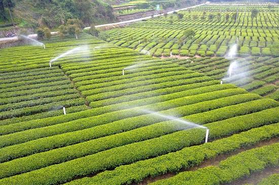 节水灌溉:农业新型节水灌溉技术